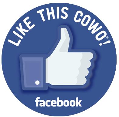 Facebook Coworking Milano Bicocca